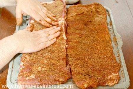 Dry-Rub-Ribs-Seasoning