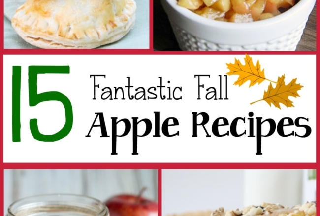 A round-up of 15 delicious recipes using apples - perfect for fall!