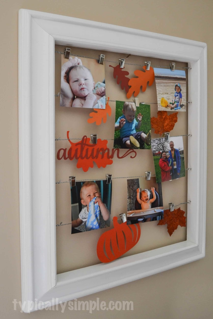 Fall Photo Display
