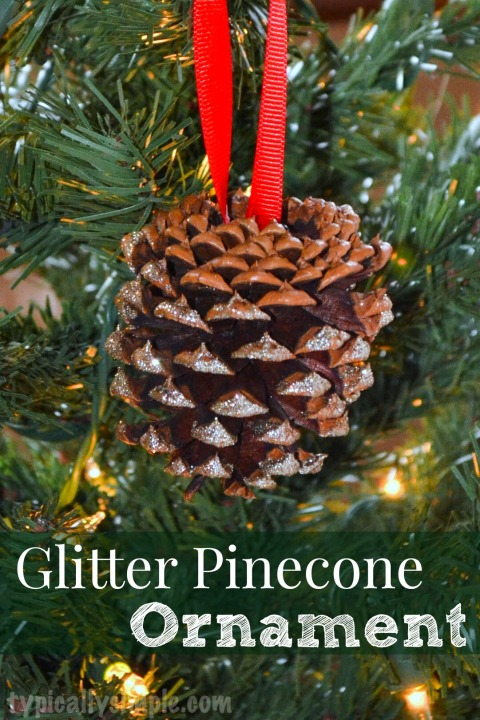 A simple way to add a little sparkle to your Christmas tree! And use cinnamon scented pinecones for a festive scent!